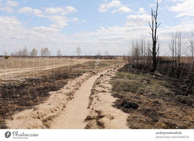 Verbranntes Gras. Frühlingsbrände. Asche des verbrannten Grases. Ein Feld mit verbranntem Gras mit Müll und verbrannten Bäumen. trocknen brennend Natur Umwelt
