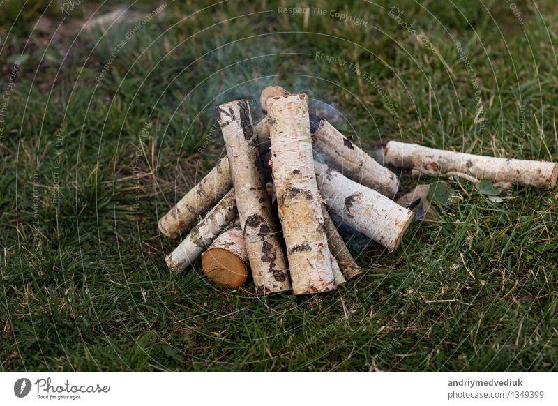 Birkenholz gestapelt zum Anzünden eines Lagerfeuers auf der Wiese Brennholz Feuer Platz für Brennholz Holz alternativ Hintergrund Umwelt Holzplatte Freudenfeuer