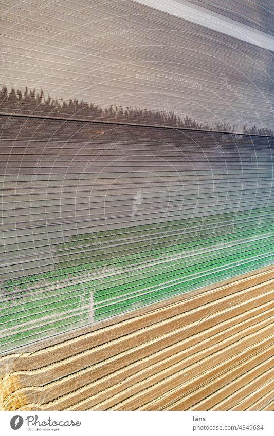 Landwirtschaftliche Anbaufläche Bewässerung Vogelperspektive Menschenleer Ackerland Wasser Sommer nass Linien Außenaufnahme Drohnenansicht Farbfoto gestreift