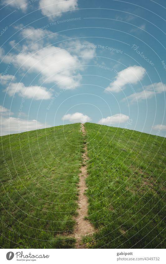 Weg in die Wolken Himmel Wege & Pfade Wiese Gras Menschenleer Richtung aufwärts vorwärts richtungweisend Ziel Karriere Orientierung Erfolg Zukunft Optimismus