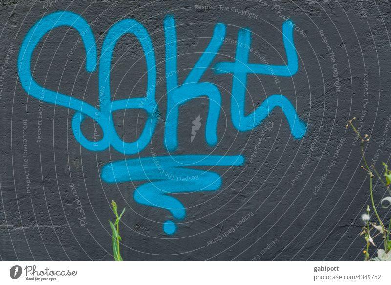 Sekt - Prost! - gezeichnet und gemalt Graffiti Wand Schriftzeichen Buchstaben Straßenkunst Mauer Schmiererei Wort Fassade Text Außenaufnahme Typographie Zeichen
