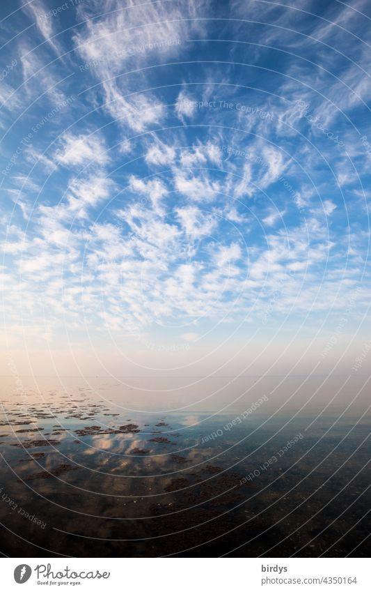 Die Ostsee, Wasser, Himmel mit dynamischer Wolkenkulisse und ein sich verlierender Horizont Natur Klima Meer glatte Wasseroberfläche Unendlichkeit Urelemente