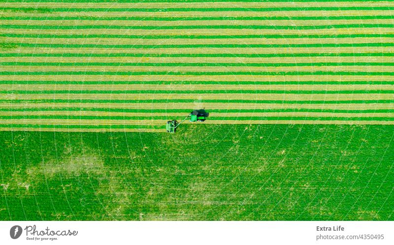 Luftaufnahme eines Traktors als Schleppmaschine für Rasenmäher hinter oben Antenne Ackerbau Luzerne beigefügt Schermaschine Klee Ernte geschnitten Kutter Ziehen