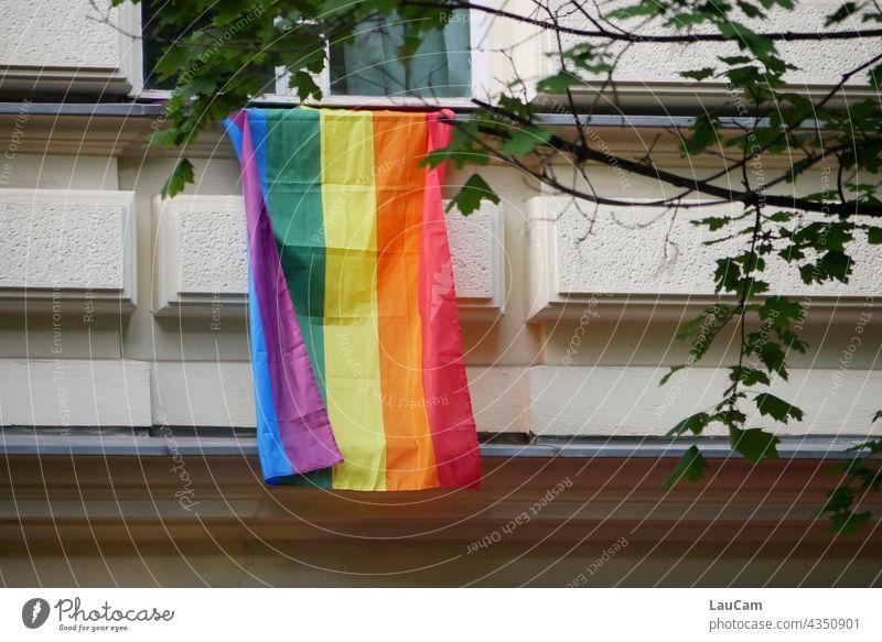 Es lebe die Vielfalt! diversity Diversität Freiheit Offenheit bunt farbenfroh mehrfarbig lgbtq Liebe Toleranz Gleichstellung Gemeinschaft Homosexualität Stolz