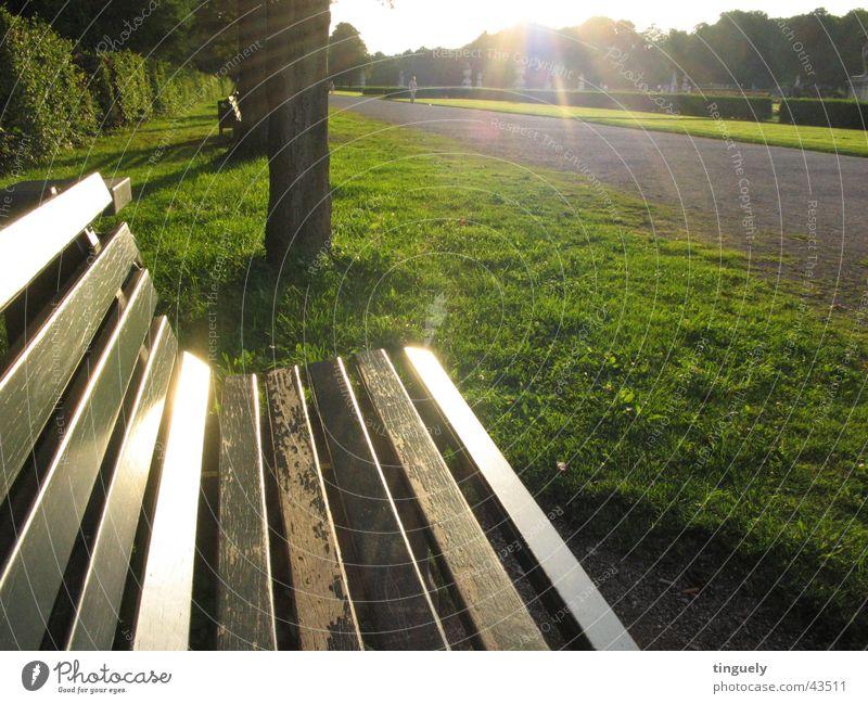 Parkbank Gegenlicht Schloss Nymphenburg Licht Stimmung Sonnenstrahlen glänzend grün Gras Holz Bank Beleuchtung Rasen Sitzgelegenheit