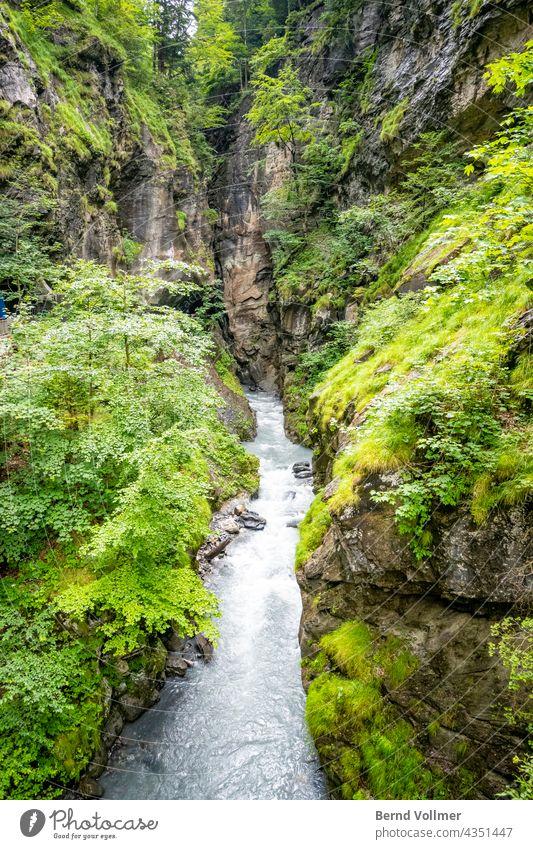 Alpen Schlucht Wasser Torrent Landschaft Bach Menschenleer Berge u. Gebirge Wasserfall Umwelt Fluss Tag Farbfoto Felsen Außenaufnahme Natur