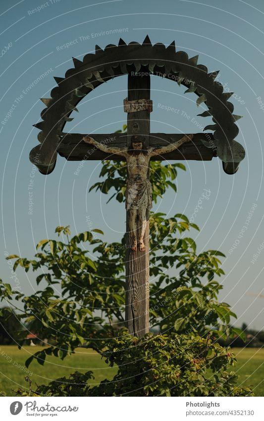 Flurkreuz / Wegekreuz mit Darstellung des gekreuzigten Christus Jesus Jesus Christus Holz Kreuz Pflanze grün Farbfoto Religion & Glaube Christentum
