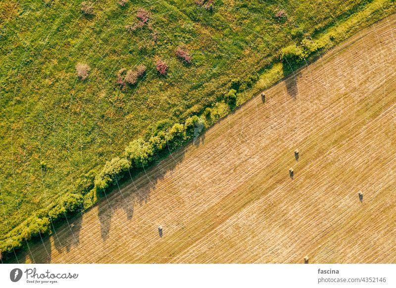 Heuballen auf dem Feld Landwirtschaft Kopierraum Ansicht von oben Ackerbau gepresst frisch Gras nachhaltig Umwelt Wiese Dröhnen Antenne Sonnenuntergang Konzept