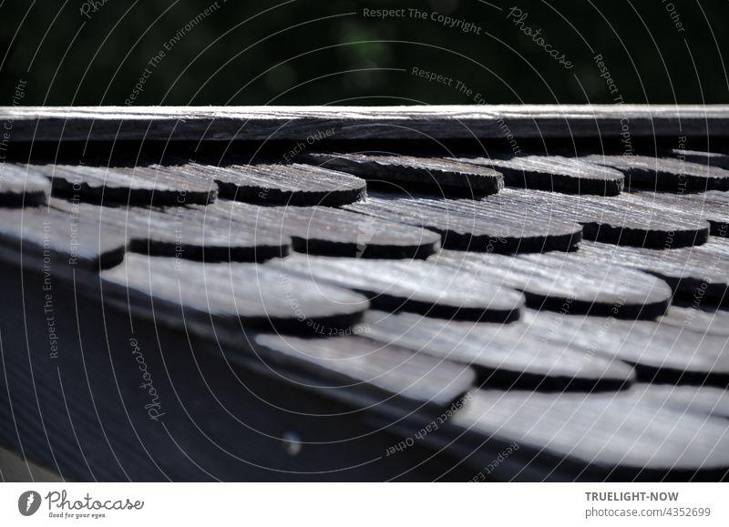 Traditionelles Schindeldach (Teilansicht einer Hütte an einem oberbayerischen See) aus Holzschindeln im Biberschwanz Design zeigt seine charakteristische Struktur besonders eindrucksvoll im Licht der Morgensonne