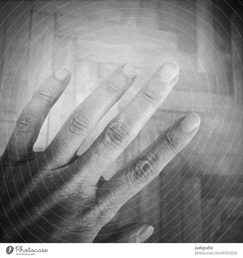 Hand Finger Parkettboden Fingernagel Haut Mensch vier Zeigefinger Mittelfinger Ringfinger Daumen kleiner finger Schwarzweißfoto Gelenk Körperteile