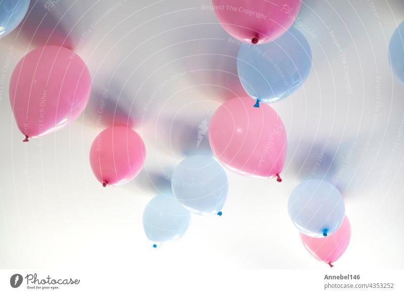 Geschlecht offenbaren Partei blau und rosa Luftballons im Wohnzimmer auf weiße Wand Definition eines Jungen oder Mädchen, Versammlung Party Partydekoration