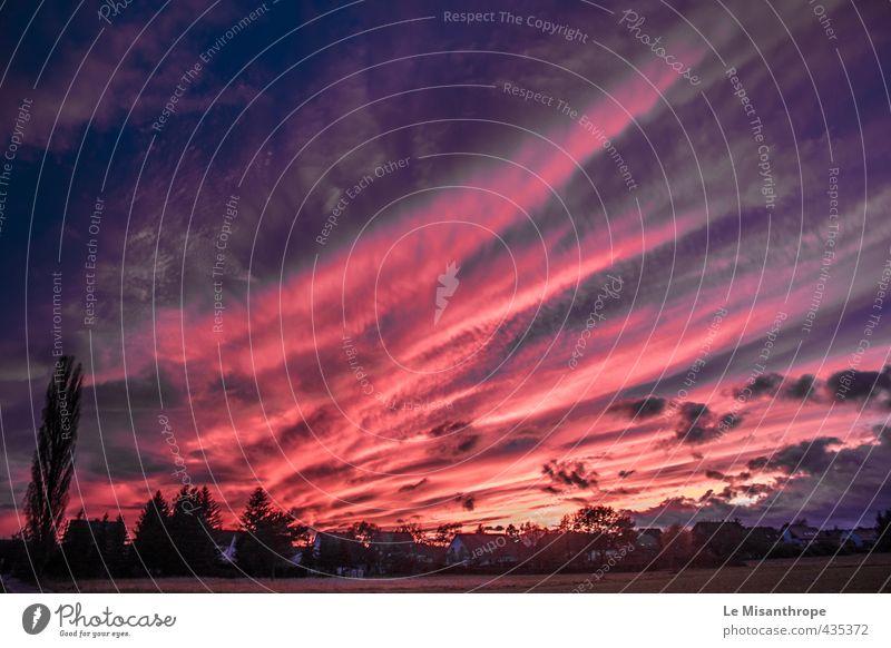 Ein Himmel wird erst schön durch die Liebe Umwelt Natur Landschaft Erde Wolken Sonne Sonnenaufgang Sonnenuntergang Herbst Wiese Feld Wittlich Wengerohr Eifel