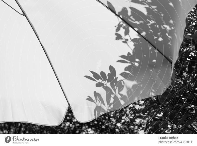 Teil eines weißen Sonnenschirms mit Schatten der Blätter vom Baum dahinter Sonnenlich Sommerstimmung Garten schwarzweiß im Schatten Licht Schattenspiel Kontrast