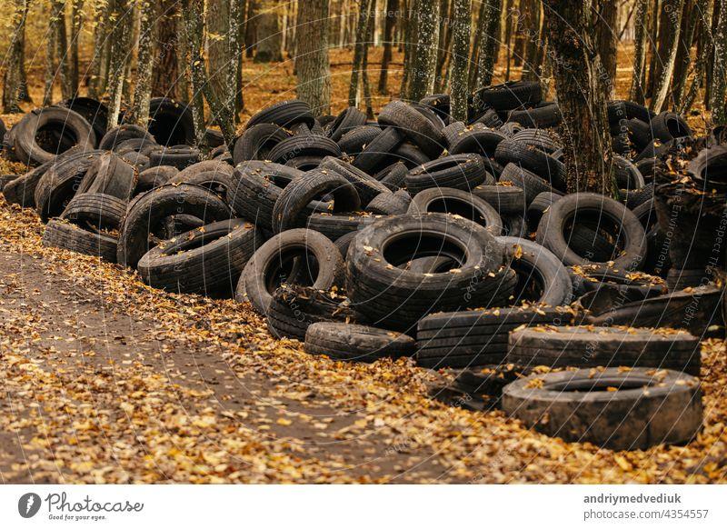 Ein alter Autoreifen, der in einen Wald geworfen wurde, macht Lärm. Reifen Verlassen Holz Gummi Verschmutzung Müll Ökologie Transport Deponie abgeladen schwarz