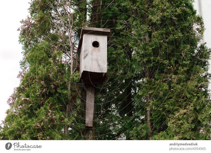 Baumhaus für Vögel auf dem Baum, Vogelhaus auf dem Baum für überwinternde Vögel Futterhäuschen Wald handgefertigt Park Wartehäuschen Holz gefiedert grün Hütte