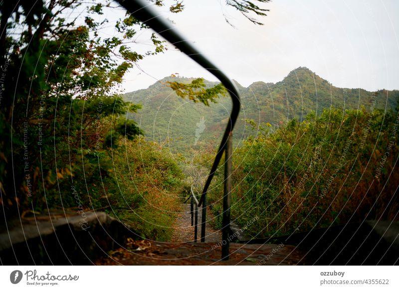 Treppe auf dem Berg Berge u. Gebirge Treppenhaus Natur grün im Freien Weg Abenteuer Nachlauf Gras schön Landschaft Park Stein Schritt nach oben Spaziergang