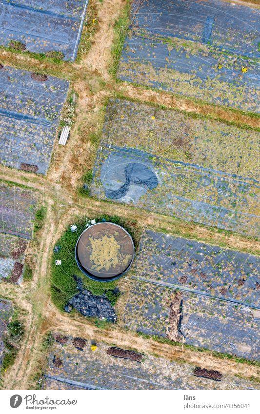 Plastikfolie in der Landwirtschaft ll Strukturen & Formen Natur nahrungsmittelproduktion Drohnenansicht Menschenleer Vogelperspektive Drohnenaufnahme
