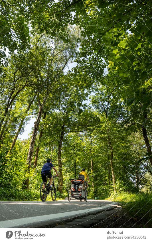 Fahrradfahren im Park Mobilität Mobilitätswende Radweg wald Fahrradweg fahrradweg straße fahrbahnmarkierung asphalt richtung linie navigation grün draußen Natur