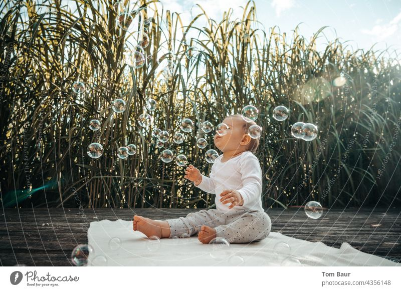 Baby sitzt vor Schilf auf dem Boden und spielt mit Seifenblasen Spielen Freude Kindheit Glück Fröhlichkeit Himmel spielen Schilfrohr Außenaufnahme träumen