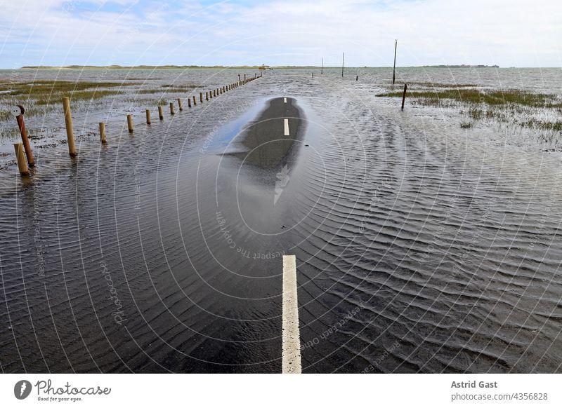 Hochwasser hat eine Straße völlig überflutet. Gefährliches Unwetter mit viel Regen hochwasser überschwemmung überflutung unwetter sturm straße überschwemmen