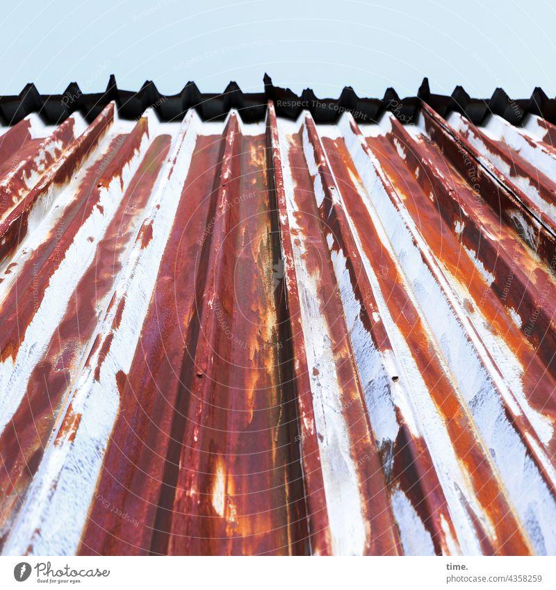 Lost Land Love | Rostlaube dach himmel nieten rost blech metall first parallel flucht rot grau