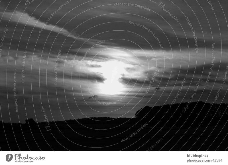 Sonnenuntergang bei Dettingen schwarz weiß Gegenlicht Wolken Baum Kontrast Himmel