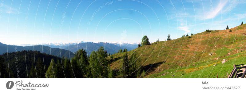 Hüttenpanorama Baum Wald Berge u. Gebirge groß Aussicht Hütte Panorama (Bildformat) Alm Pflanze Gipfelkreuz