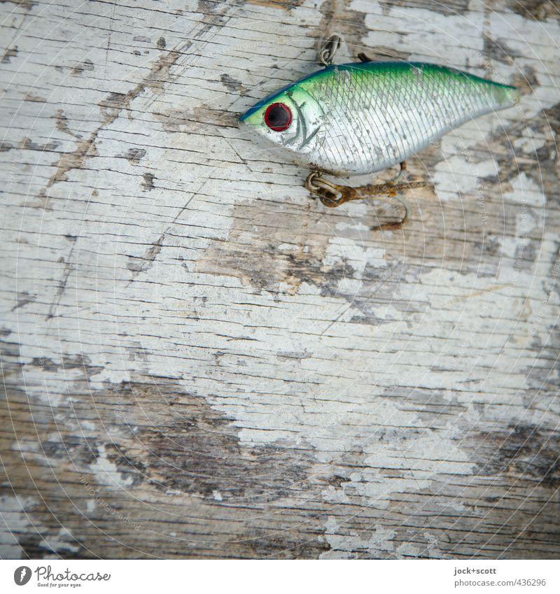 Fishing lure Stil Holz klein Metall liegen authentisch Perspektive Dinge ästhetisch niedlich retro Fisch fest lecker nah Rost