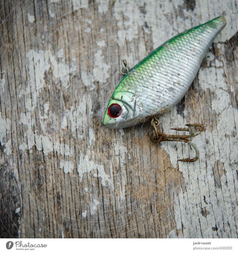 FishEye Angeln Köder Holz Metall Rost authentisch klein nah Originalität Kultur Mittelpunkt Fisch künstlich Fischauge Haken gebraucht Oberflächenstruktur