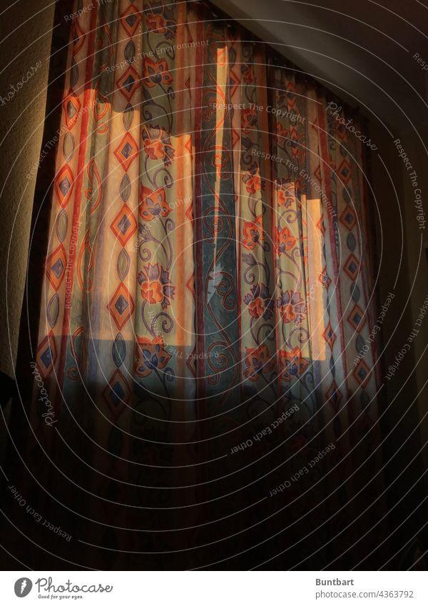 Morgens hinter der Gardine Fenster Vorhang Stoff Häusliches Leben Licht Wohnung Innenaufnahme Dekoration & Verzierung Menschenleer Innenarchitektur Sichtschutz