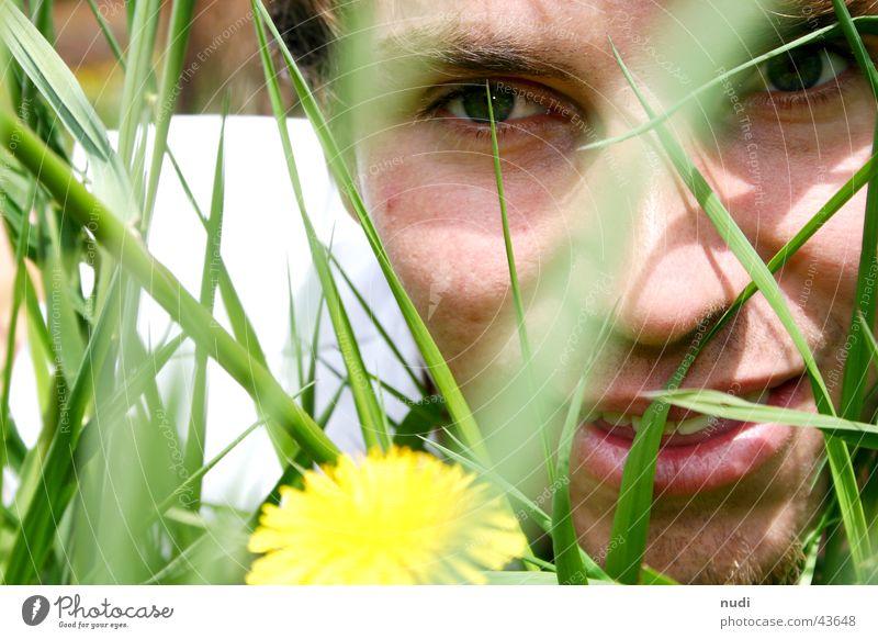 schau mal... Mann Natur Blume grün Gesicht Auge gelb Wiese Gras lachen Haare & Frisuren Rasen liegen