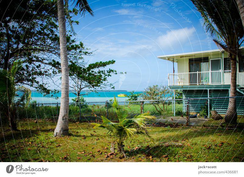 sea view, blue sky Lifestyle Wolken Schönes Wetter Baum exotisch Garten Wiese Küste Meer Pazifik Queensland Motorboot Wachstum authentisch natürlich retro Wärme