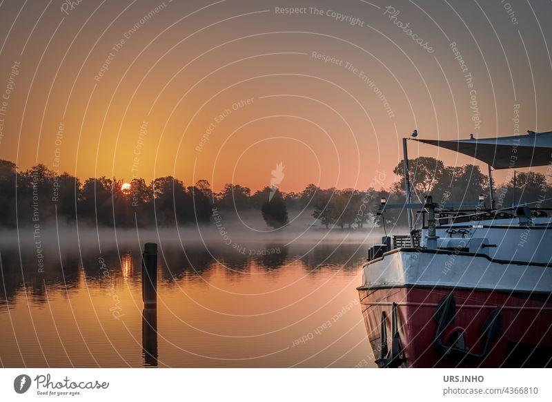 mit dem Sonnenaufgang verschwindet der Nebel über dem Wasser Fluss Havel Brandenburg orange Schiff Morgennebel Spiegelung Dämmerung Stille Idylle idyllisch