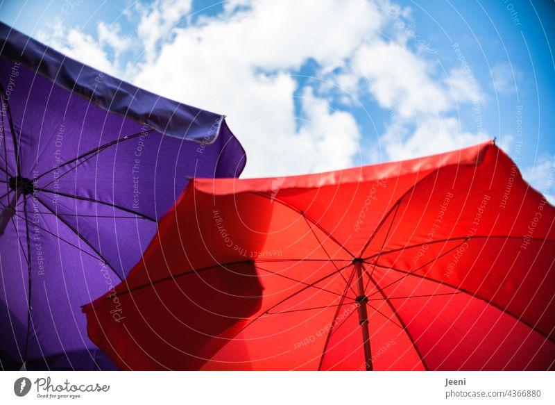 Zwei Sonnenschirme unter leicht bewölktem Himmel zwei rot lila violett blau Blauer Himmel Wolken weiß nach oben nach oben sehen nach oben schauen