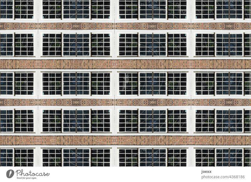 Fensterreihe an Fassade Außenaufnahme Farbfoto Wand Haus Gebäude Mauer Menschenleer Architektur Muster Wiederholung Eintönig Strukturen & Formen