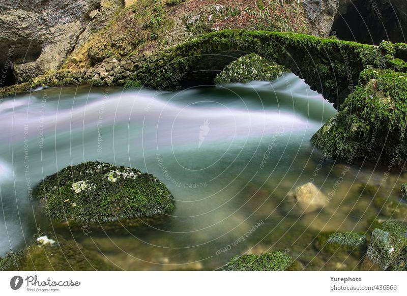 Brücke über unruhiges Wasser Natur Frühling Moos Farn Fluss Rakek Slowenien Alte Steinbrücke Schlucht Felsen Wasserstrahl Flüssigkeit nass wild blau grün