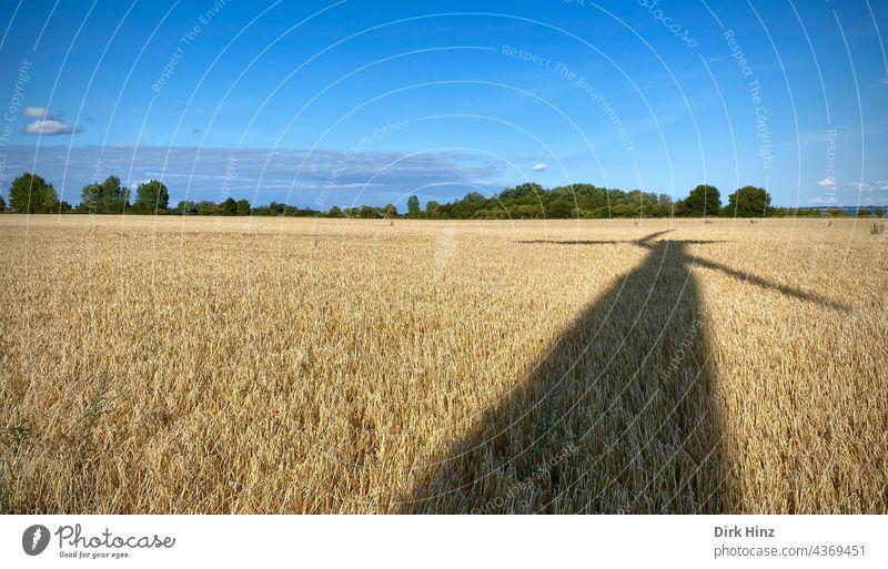 Schatten einer Windkraftanlage auf Getreidefeld Ökostrom Erneuerbare Energie Energiewirtschaft Windrad Elektrizität Umweltschutz umweltfreundlich