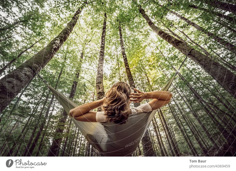 einfach mal rumhängen… Frau Hängematte Baum Wald Froschperspektive Erholung Natur Lifestyle Sommer jung Camping aussruhen Tag Außenaufnahme bequem schön