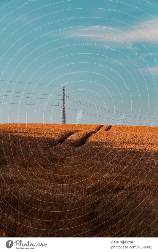 Feld auf einer Halbinsel in Dänemark II Naturerlebnis Lebensfreude Gedeckte Farben abstrakt Muster Strukturen & Formen Textfreiraum links Textfreiraum unten