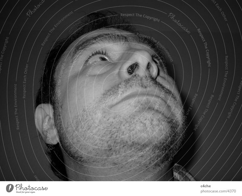 Er sieht nach oben. Mensch Mann Gesicht Auge Bart