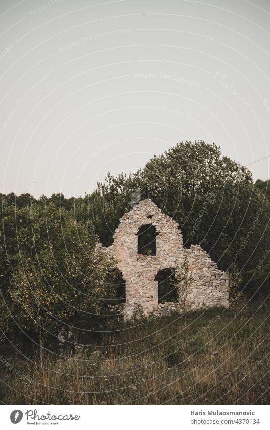 Überreste des alten Hauses, bedeckt mit Blättern und Bäumen Verbleibende Stein Natur Verlassen verlassenes Haus Steinwand Steinblock Steine natürlich Speiserest