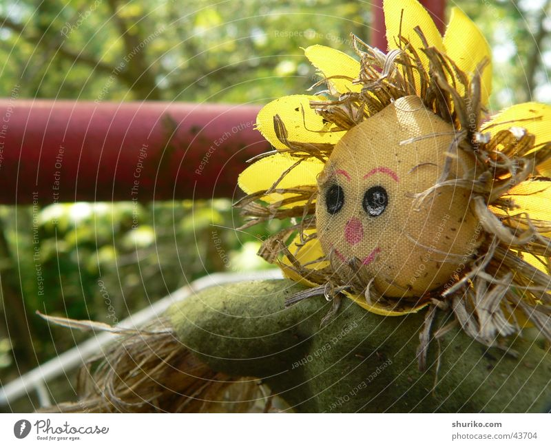 [:::chuchelo:::] alt grün Sommer Ferien & Urlaub & Reisen gelb Arbeit & Erwerbstätigkeit Herbst Garten Häusliches Leben 4 Puppe Stroh Oktober Sommerurlaub Schrebergarten