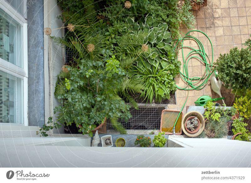 Hinterhof aus der Vogelperspektive altbau außen brandmauer fassade fenster haus hinterhaus hinterhof innenhof innenstadt mehrfamilienhaus menschenleer mietshaus