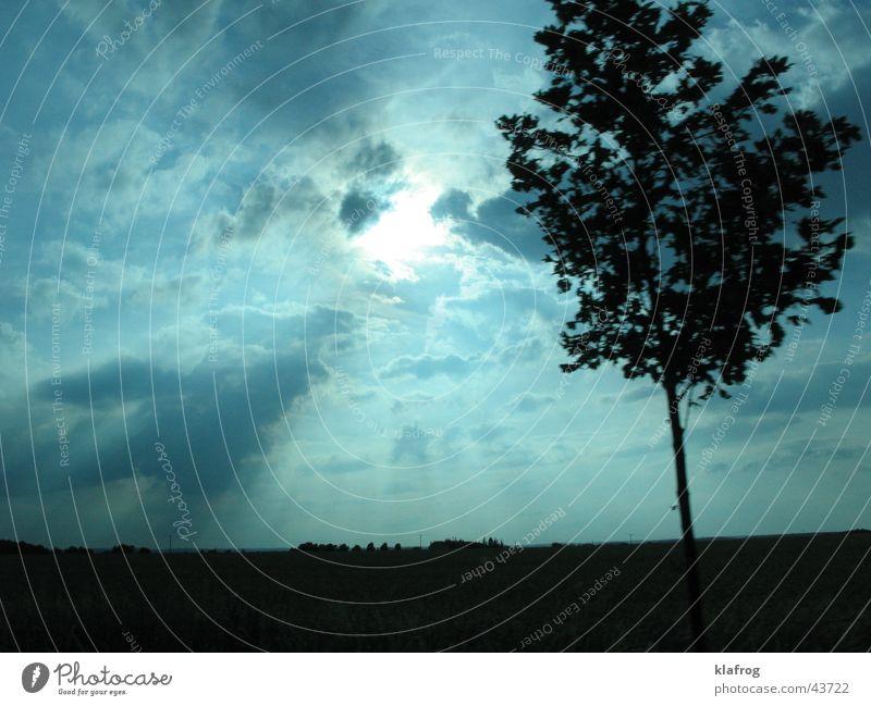 Der bewegte Stamm Baum Sonne blau Ferien & Urlaub & Reisen ruhig Wolken Farbe Bewegung Landschaft Stimmung Ausflug Macht fahren Himmelskörper & Weltall