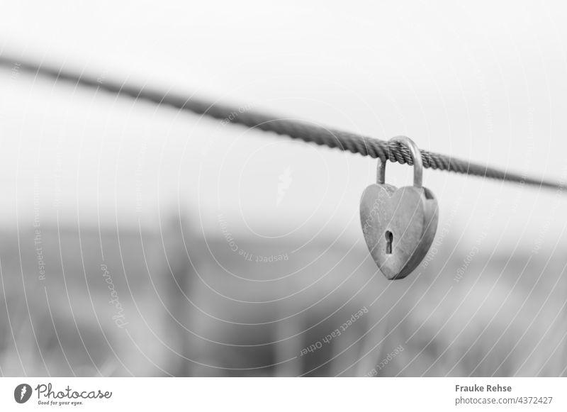 Herzförmiges Liebesschloss am Meer Liebesschlösser Vorhängeschloss Drahtseil Gräser Dünen verliebt ewige Liebe Schloss herzformig Herzform Schlüsselloch
