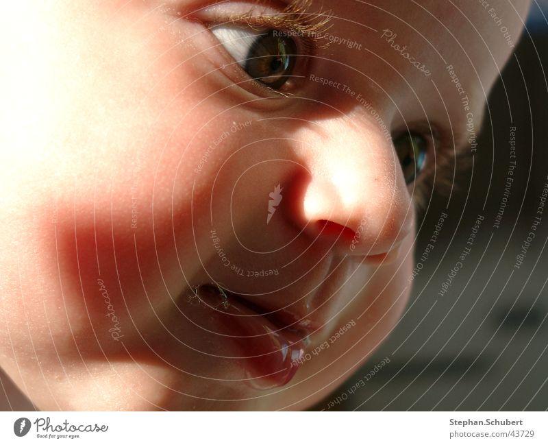 Was guckst Du? Baby Kleinkind Lippen Wimpern fixieren Kind Kopf Gesicht Auge Nase Mund Schatten Detailaufnahme Blick