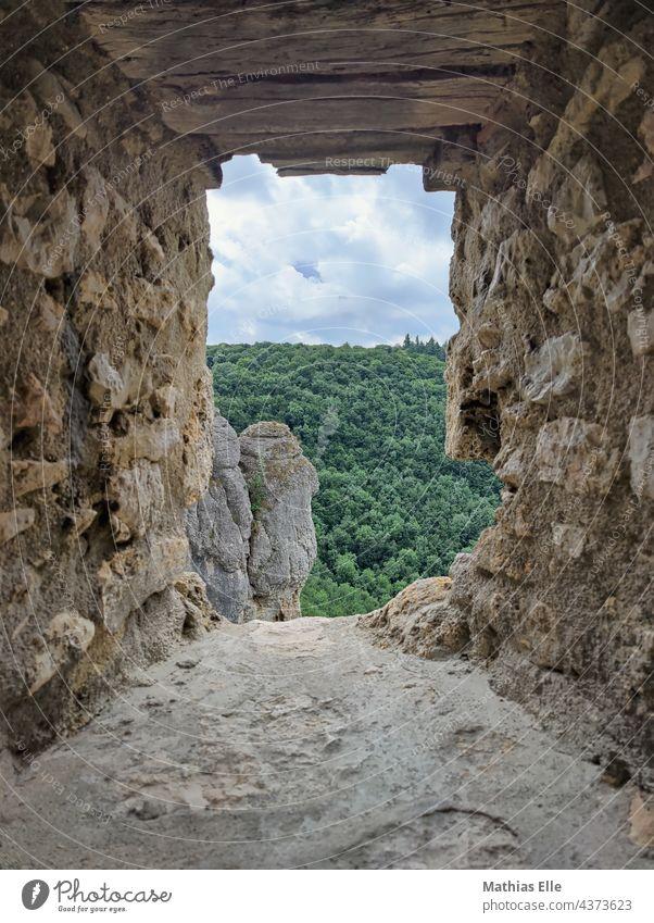Der Blick durch eine Schießscharte mit Felsen mit Wald im Hintergrund Sommer Sand Himmel Stein Außenaufnahme Farbfoto Burgruine Altertum Starke Tiefenschärfe