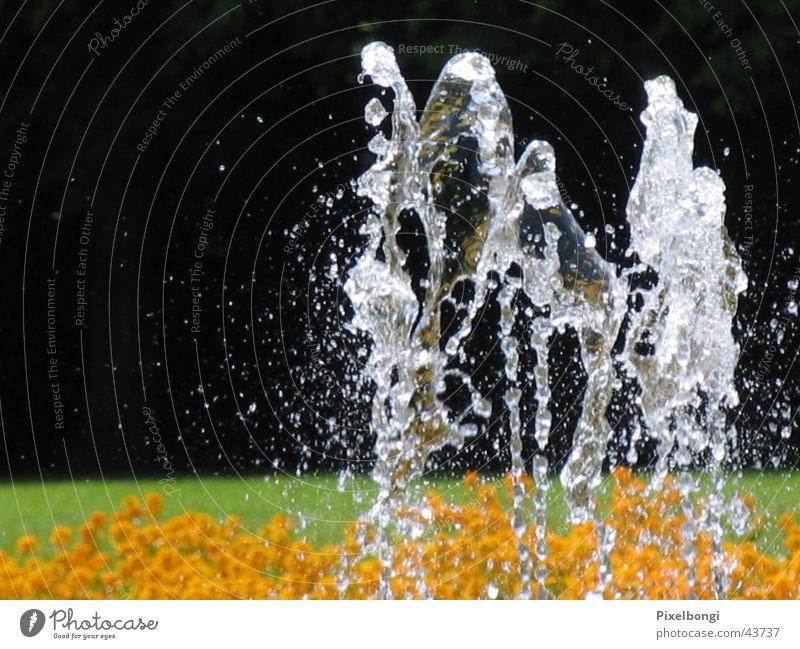 Wasserballett Sommer Brunnen Erfrischung Springbrunnen