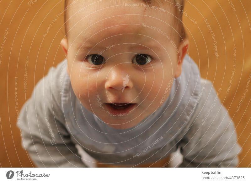 Babyblick Junge Blick Blick in die Kamera Kleinkind fröhlich staunen Kindheit 0-12 Monate niedlich Gesicht