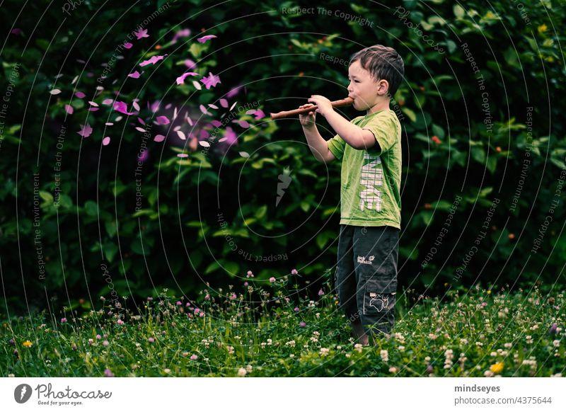 Junge spielt Zauberflöte Flöte Musik Sound grün Garten Geräusche Zauberei u. Magie zauberhaft musizieren Freizeit & Hobby Kindheit Fantasie träumen
